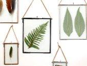 النباتات المؤطرة تريند ديكور مميز فى 2020.. إليك 8 أفكار لتنفيذه