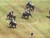 هنا الألعاب الشهيدة.. بولو الأفيال رياضة غريبة ظهرت فى نيبال
