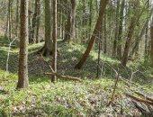 العثور على 4 تلال قديمة فى موسكو يعتقد أنها تضم قبور عائلية منذ القرن الـ 12