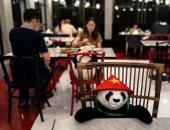 دمى الدببة ومجسمات بورق مقوى.. أفكار مبتكرة للتباعد الاجتماعى بالمطاعم