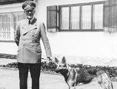 بعد وفاة تمساحه.. هل كان هتلر محبا للحيوانات الأليفة وجرم تعذيبها وقتلها؟