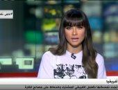 نائب رئيس المجلس المصرى للشئون الأفريقية: مصر قامت بجهود كبيرة للقارة الأفريقية