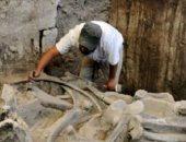 يحفرون لبناء مطار.. العثور على مقابر للماموث والبشر عمرها 14 ألف عام بالمكسيك