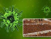 هل ينقذ التبغ البشر من فيروس كورونا؟.. فيديو
