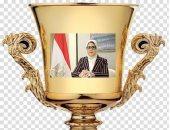 وزارة الصحة تمنح كأس التميز لمديرية الدقهلية