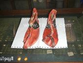 المصريون القدماء أول من لبسوا الأحذية.. اعرف الحكاية