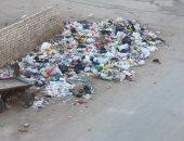 شكوى من تراكم القمامة فى شارع ربيع الملط فى محافظة بنى سويف