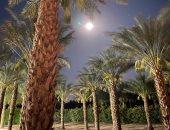 محمد حديد يتغزل فى جمال الطبيعة بصورة للقمر يزين سماء حديقته