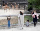 حديقة الحيوان فى باريس تفتح أبوابها امام الزائرين .. صور