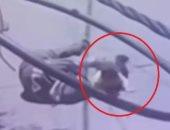 """""""طفلها بين أيديها"""" ..لحظة سقوط أم لبنانية بعد إصابتها برصاص فى رأسها.. فيديو"""