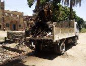 رفع 10 طن مخلفات وقمامة وتركيب 80 عمود إنارة جهد منخفض.. صور
