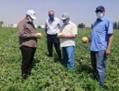 الزراعة تنظم 6 قوافل علاجية للماشية وفحص 205 شحنات تقاوى خلال أسبوع