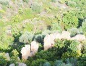 الفاو: إدراج النظم الزراعية الفريدة فى تونس ضمن قائمة التراث الزراعى