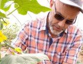أستاذ المناخ الزراعى يقدم إرشادات هامة للوقاية من أضرار الموجة الحارة