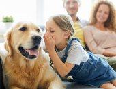 كيف تساعدك تربية الحيوانات الأليفة فى الحفاظ على صحة قلبك؟