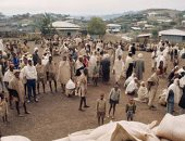 يونيسف تطلق حملة لمعالجة 9.7 مليون طفل من سوء التغذية فى الساحل الإفريقى