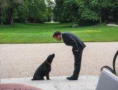 بصور مع كلبه نيمو.. ماكرون يدعو الفرنسيين لعدم التخلي عن حيواناتهم الأليفة