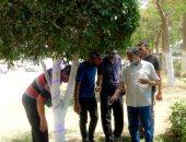 رئيس غرب المنصورة يتفقد الحدائق العامة بشارع الجيش لإقامة مشروع 306