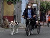 أرجنتينى عالق فى بيرو يرفض العودة لبلاده بدون كلابه .. اعرف الحكاية