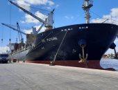 ميناء الإسكندرية: دخول وخروج 11 ألف شاحنة خلال 24 ساعة (صور)