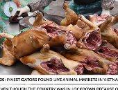 فيديو..لحوم الكلاب والضفادع والسلاحف لازالت تنتشر بأسواق فيتنام رغم كورونا