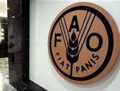 فاو: أسعار الغذاء العالمية ترتفع فى يونيو لأول مرة بـ 2020
