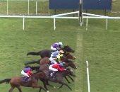 """4 خيول تصل خط النهاية بنفس اللحظة فى سباق والتكنولوجيا تحسم الفائز بـ """"الأنف"""""""