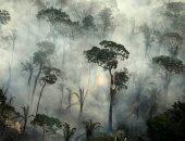 حرائق غابات الأمازون تصل لأعلى مستوياتها خلال يونيو على مدار 13 عاما