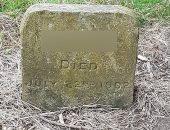 """مدينة بريطانية تذيل نصب تذكارى لمقبرة كلب توفى عام 1902.. إيه السبب؟ """"صور"""""""
