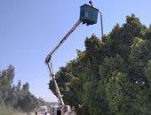 صيانة وإنارة أعمدة الكهرباء بقرية العدوة فى أسوان