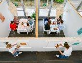 غرفة لكل طاولة.. افتتاح أول مطعم بريطانى مصمم لمراعاة التباعد الاجتماعى