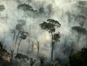 الأقمار الصناعية تكشف عن انتشار حرائق الأمازون