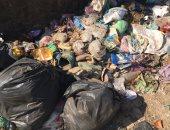 شكوى من انتشار القمامة بقرية سمادون اشمون بالمنوفية
