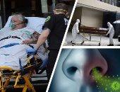 حصيلة الوفيات بفيروس كورونا حول العالم تتخطى 565 ألف حالة