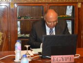 وزير الخارجية يؤكد دعم مصر الكامل لمسار التعاون بين أفريقيا وروسيا