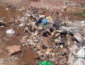 قارئ يشكو غرق شارع بلال بن إبراهيم بمياه الصرف الصحى وعدم إضاءة أعمدة الإنارة فى محافظة الغربية