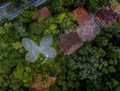 """إبداعات الحجر الصحى.. عالم كولومبى يحول منزله إلى """"جنة نباتات"""".. صور"""