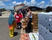 محبة للخير.. بيلا حديد تشارك فى توزيع مساعدات إنسانية.. صور