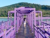 """جزيرة """" البنفسج"""" تتحول لأحدث مناطق الجذب السياحى فى كوريا الجنوبية .. اعرف القصة"""