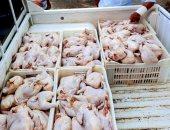 ضبط 4 أطنان دجاج و69 كيلو كبدة غير صالحة للاستهلاك الآدمى بالشرقية