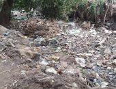 شكوى من تراكم القمامة والحيوانات النافقة فى ترعة أم حج موسى بمدينة قويسنا