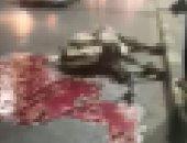 هرب من المدبح حبًا فى الحياة فصدمته سيارة ومات..نهاية مأساوية لجمل بشوارع القاهرة