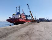 تداول 24 سفينة حاويات بموانئ بورسعيد