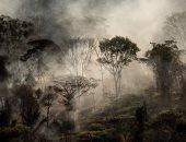 شاهد..حرائق مستعرة فى غابات الأمازون بالبرازيل