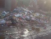 شكوى من انتشار القمامة والأوبئة بمنيل شيحة مركز أبو النمرس فى محافظة الجيزة