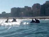 رحلة البحث عن جثة شادى خلال 12 يوما.. وعكارة المياه عائق كبير.. فيديو