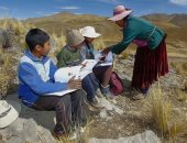 """4 أطفال يتسقلون جبال الأنديز يوميا """"للتعلم عن بُعد"""" بسبب كورونا.. صور"""