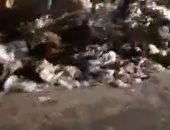 قارئة تشكو من انتشار القمامة بكوبرى المساكن على الدائرى بكفر طهرمس