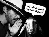 """نجوم الفن يحتفلون بعيد الأضحى.. أحمد حلمى بصورة مع الخروف: """"اعمل نفسك ميت"""""""