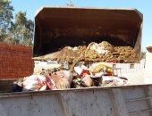 استمرار تكثيف أعمال النظافة ورفع تجمعات القمامة وإزالة تعديات فى الدقهلية